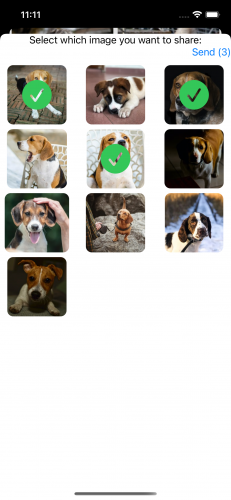 The visible share sheet with some images selected
