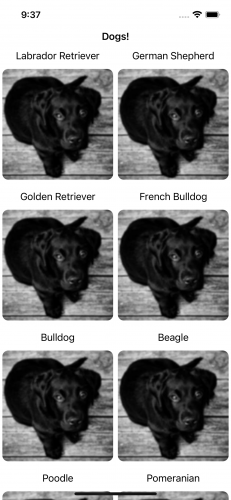 DogLife app with the same picture of a black dog for each category