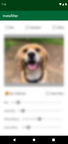 Instafilter with dog photo and all controls blurred