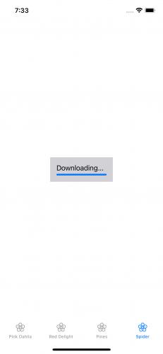 Progress bar under the word Downloading.
